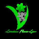 LES BOUQUETS de fleurs lyon